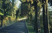 La Via Vecchia Fiesolana